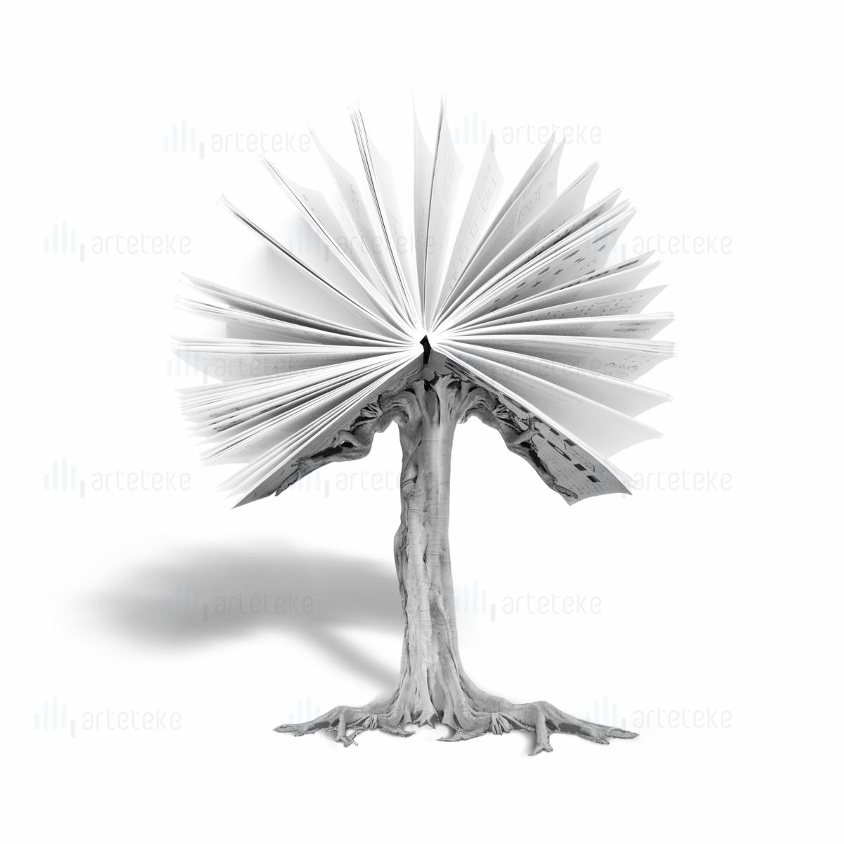 albero e librodefcon ombra